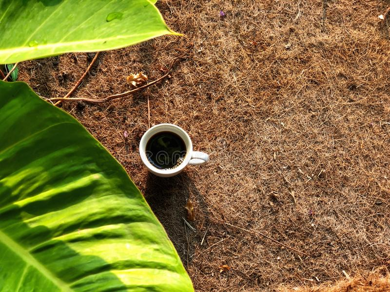Black coffee cup on brown Coconut fiber with green foreground royalty free stock photography