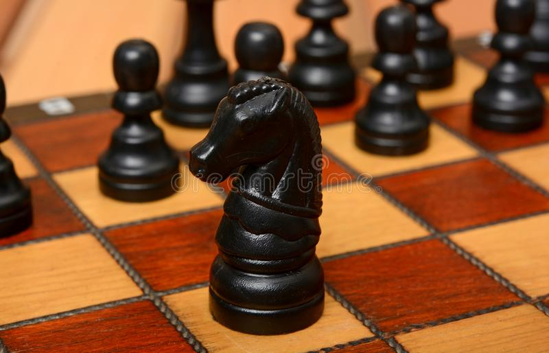 Black color chess knight on fron with pawns in background.  royalty free stock images