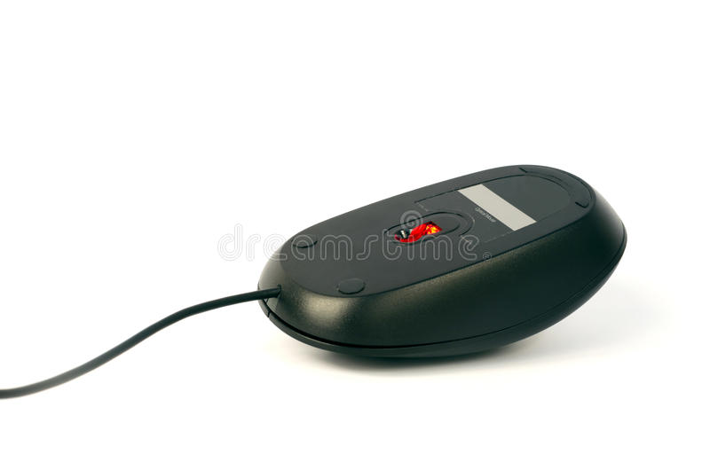 black-computer-mouse-connected-position-