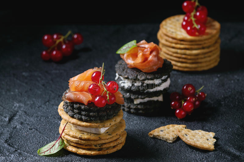 Black crackers with salmon and berries royalty free stock image