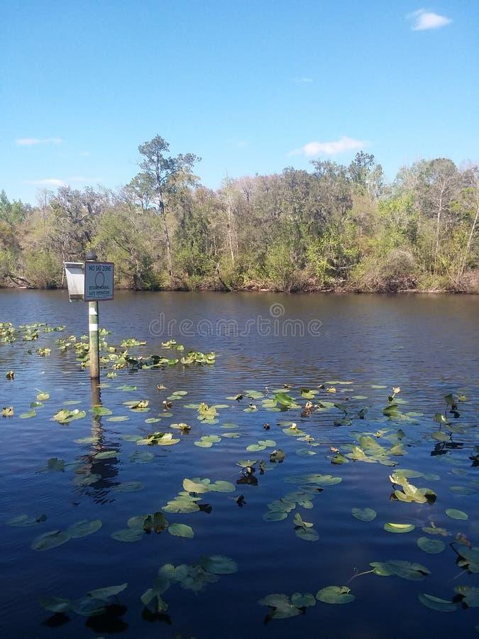 Black creek veiw royalty free stock photography