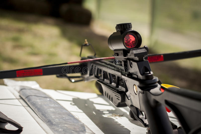 Black crossbow with an optical sight stock images