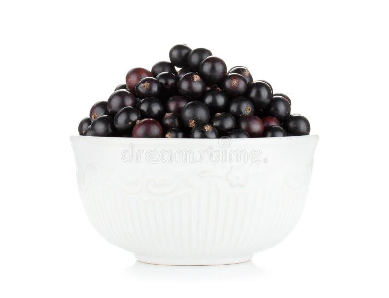 Black currant bowl royalty free stock photos