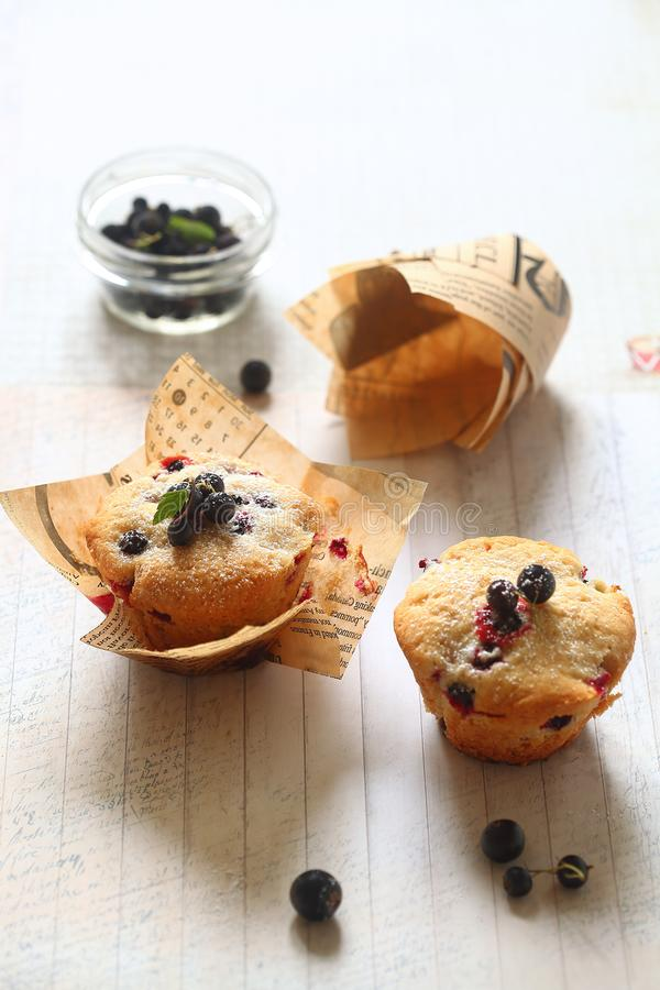 Black Currant Cakes in paper cups royalty free stock photos