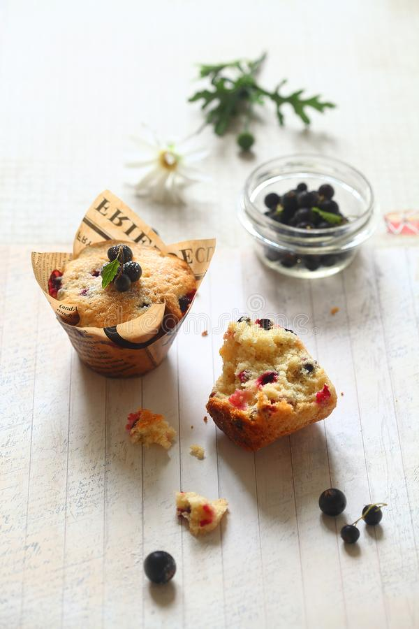 Black Currant Cakes in paper cups royalty free stock photo