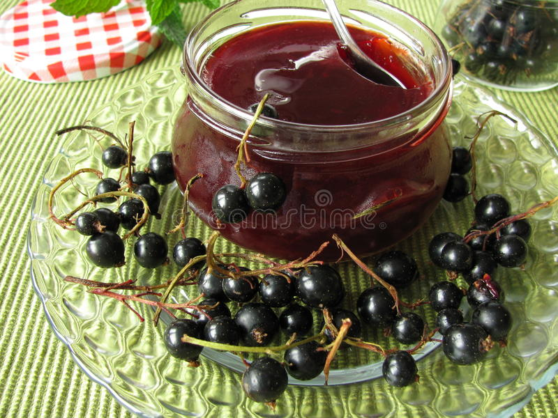 Black currant jelly. Homemade black currant jelly and fresh fruits stock image