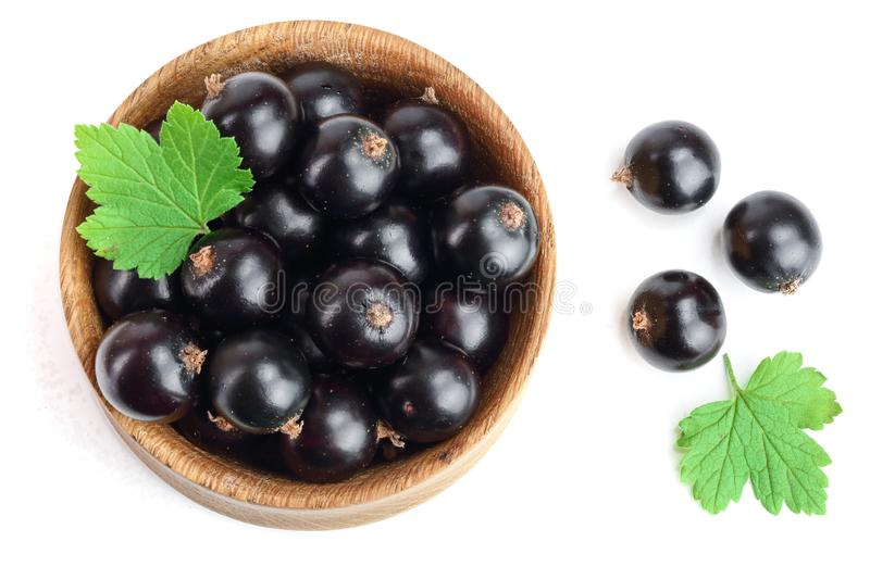 Black currant with leaf in wooden bowl isolated on white background. Top view. Flat lay pattern royalty free stock images