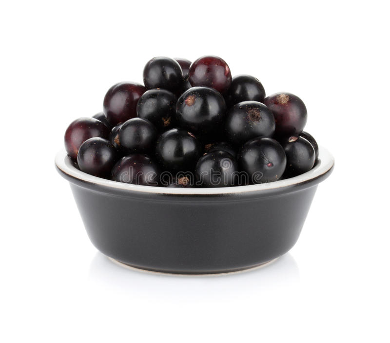 Black currant in small bowl royalty free stock photos