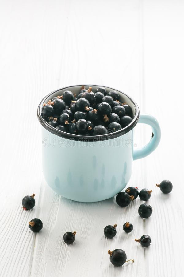 Black currant in tea cup on a white wooden table. Close up stock images