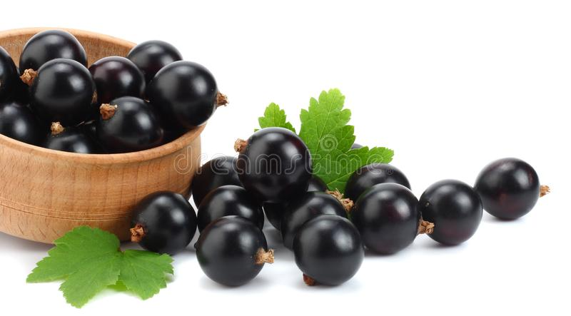 black currant in wooden bowl with green leaf isolated on white background royalty free stock photography