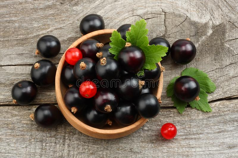 black currant in wooden bowl with green leaf on old wooden background. top view stock photography