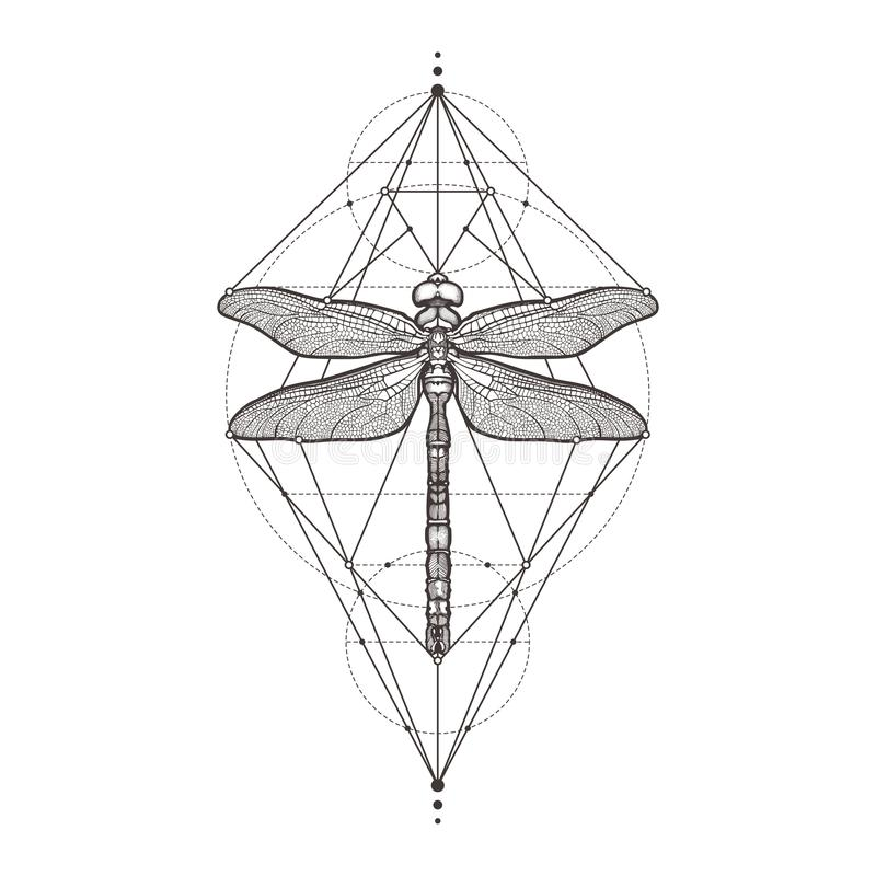 Free Black Dragonfly Aeschna Viridls, Isolated On White Background. Tattoo Sketch. Mystical Symbols And Insects. Alchemy Stock Photos - 105313583