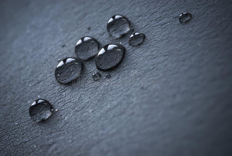 black droppläder över vatten arkivfoto