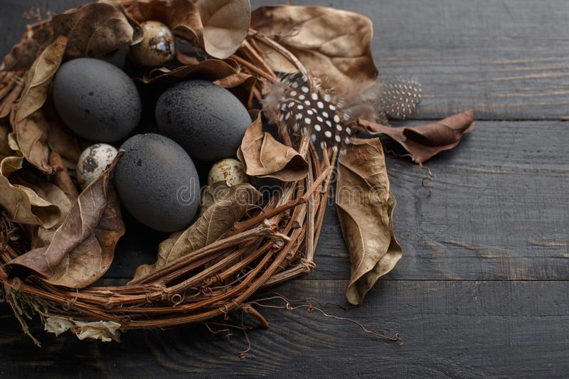 Black eggs in a nest of dry branches on a black board. Easter style stock photos