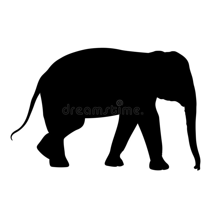 Black elephant silhouette Asia walking, graphics disign vector outline Illustration isolated. On white background vector illustration