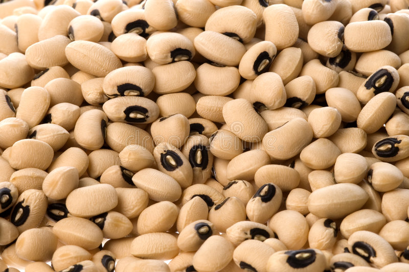 Download Black Eye Beans stock photo. Image of nutrition, vegetable - 6182316