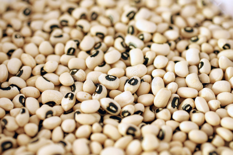 Black eye peas stock photography