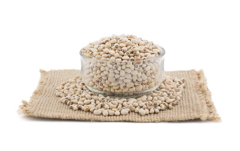 Black-eyed Beans. Group of fresh Black-eyed Beans royalty free stock image