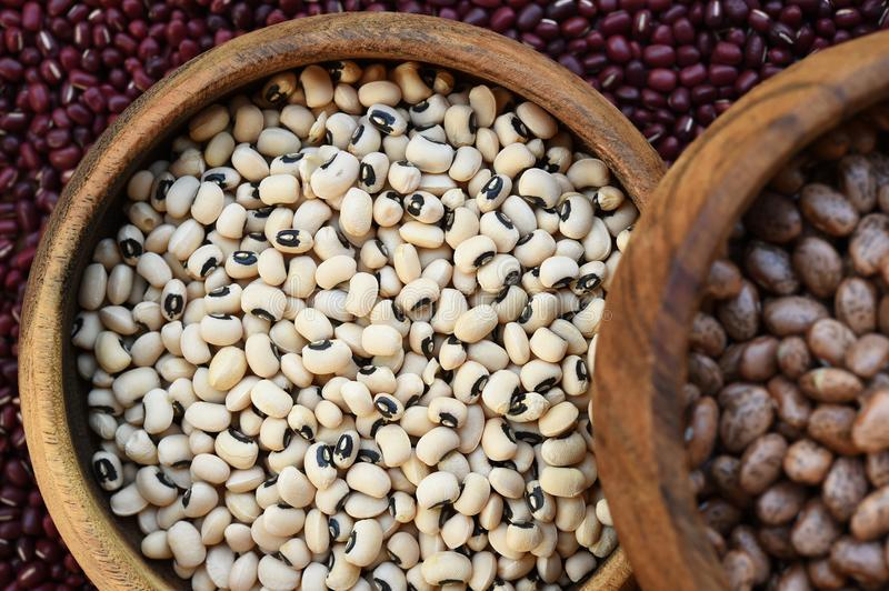 Black eyed peas and pinto bean in wooden bowl. On red bean background stock images