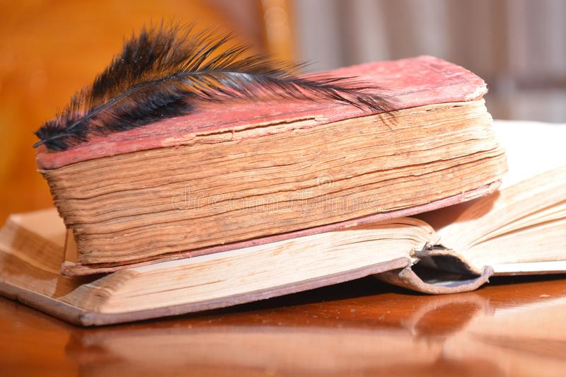 Black feather on old books on wood table reading for university school education stock photos