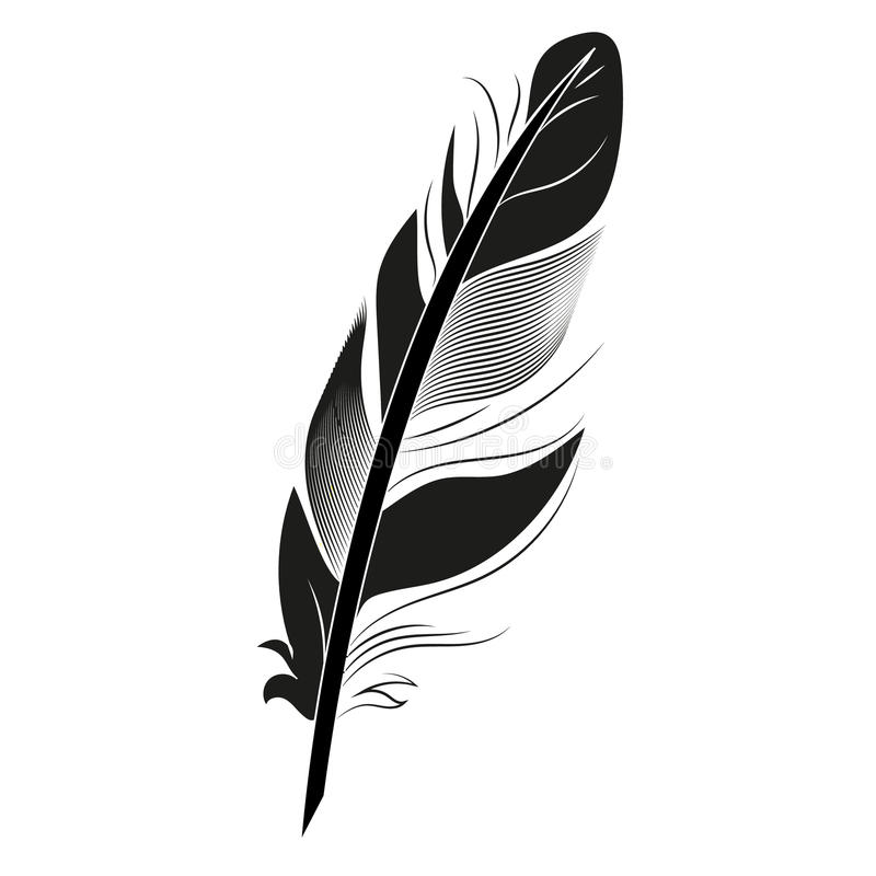 Black And White Feather Drawing