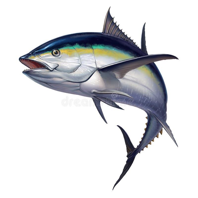 Black fin tuna. Fish black fin tuna on a white background. black fin tuna on a white background jumping stock illustration