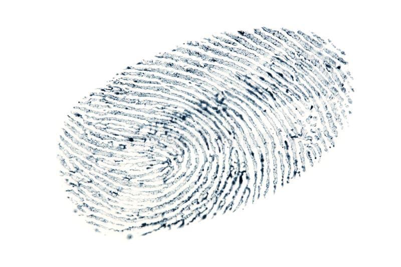 Black fingerprint pattern isolated on white background.  stock images