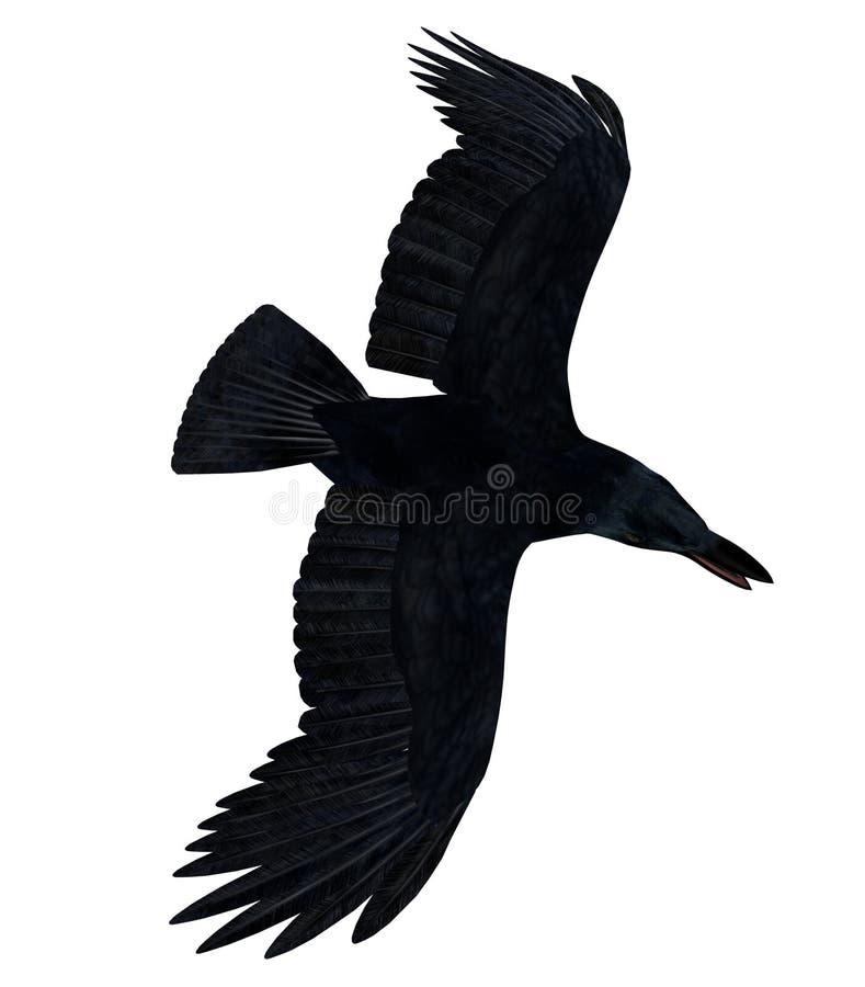 Black Flying Raven Silhouette 300 dpi