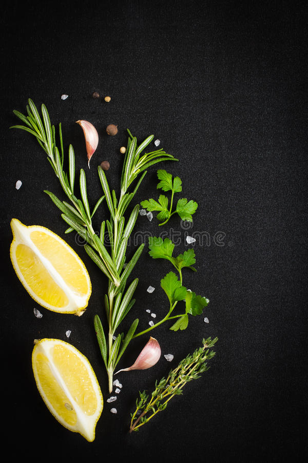 Black food background with fresh aromatic herbs and spices, copy royalty free stock images