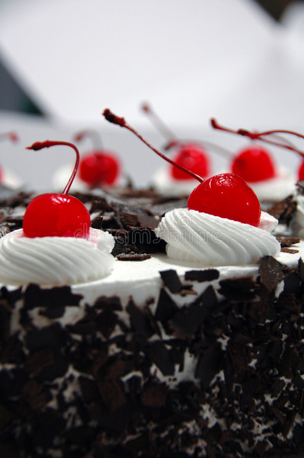 Black forest cake. Decorated with cherries stock images