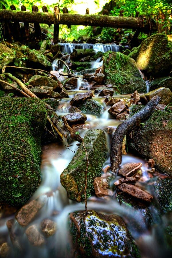 Download Black forest creek stock photo. Image of bridge, stones - 26484506