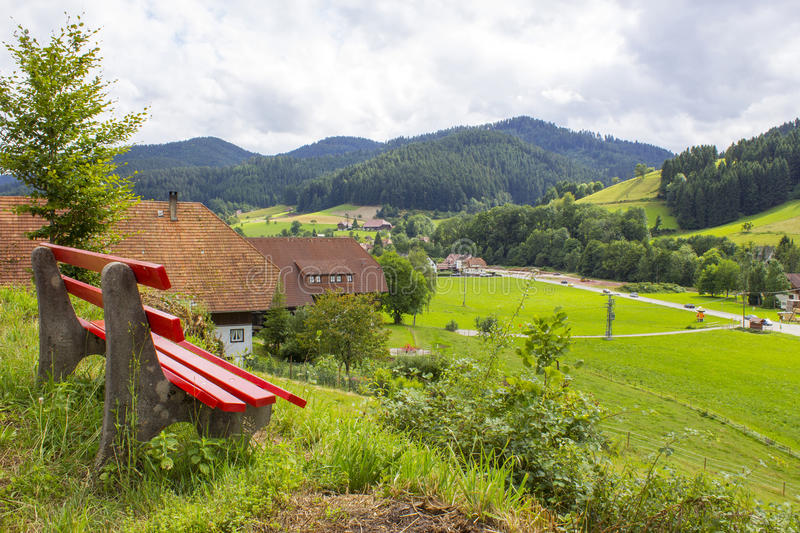 Black Forest in Germany royalty free stock photos