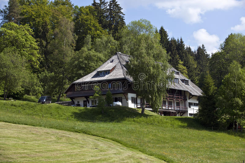 Download Black Forest House stock photo. Image of blue, farm, pasture - 25881382