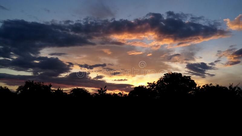 Black Forest Under Cloudy Sky during Sunset royalty free stock photos