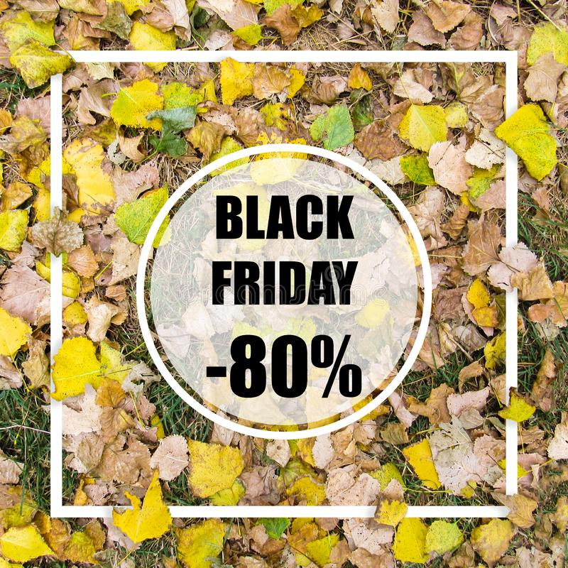 Black friday -80% sale. Creative layout made with green leaves background, square frame. This is a blank for advertising card. stock photos