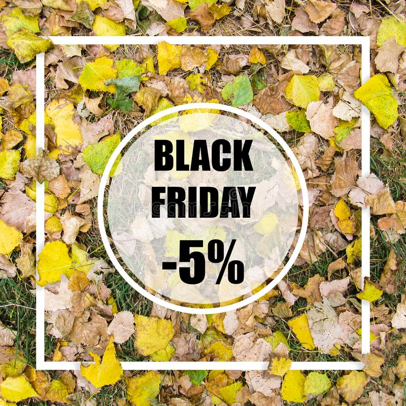 Black friday -5% sale. Creative layout made with green leaves background, square frame. This is a blank for advertising card. stock photography