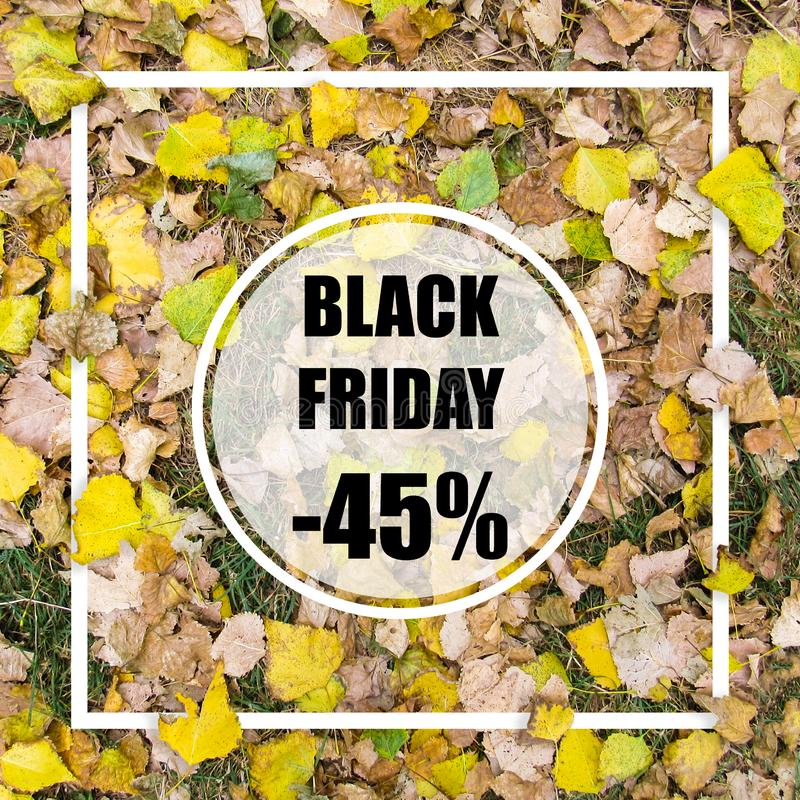 Black friday -45% sale. Creative layout made with green leaves background, square frame. This is a blank for advertising card. stock photos
