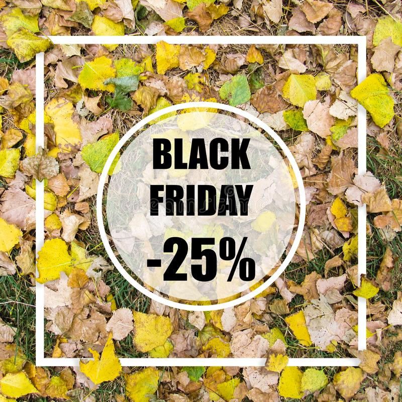 Black friday -25% sale. Creative layout made with green leaves background, square frame. This is a blank for advertising card. stock photo