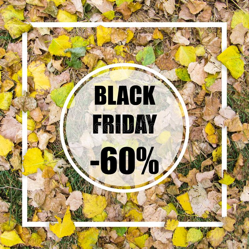 Black friday -60% sale. Creative layout made with green leaves background, square frame. This is a blank for advertising card. stock images