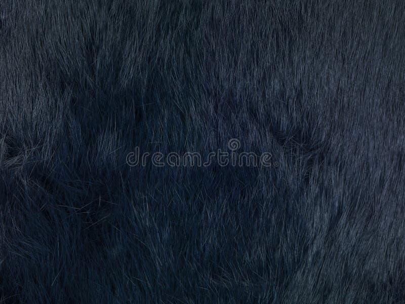 Black fur background. Close up stock photo