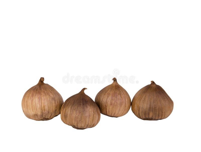 Black garlic bulbs isolated on white background royalty free stock photos
