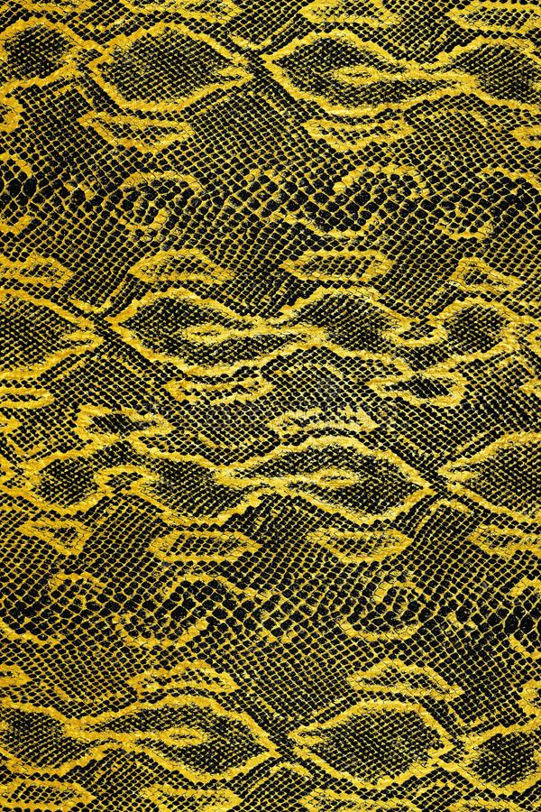 Black and gold snake skin pattern royalty free stock photos