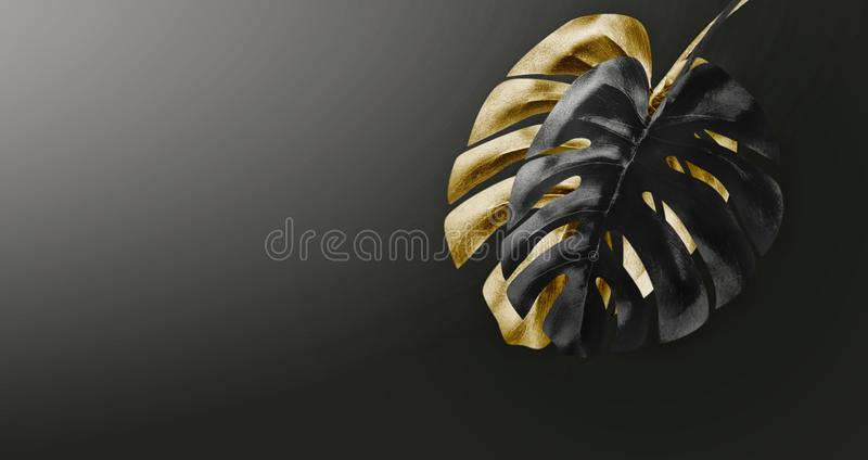 Black and gold tropical leaves arrangement at dark gradient background with copy space. Creative exotic botanical design. Template stock image
