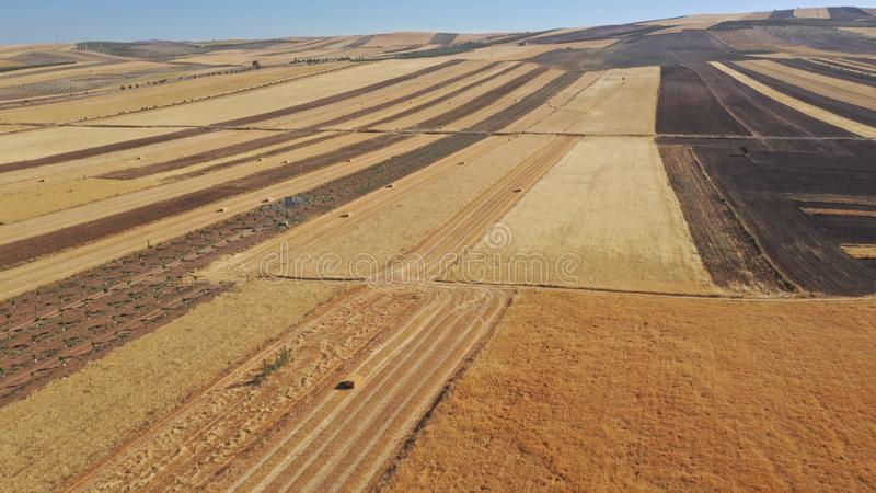 Black and golden fields of cereal with bales of straw after harvest seen from drone stock images