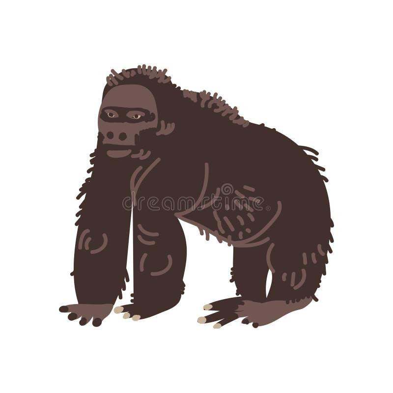 Black Gorilla Monkey African Animal Vector Illustration vector illustration