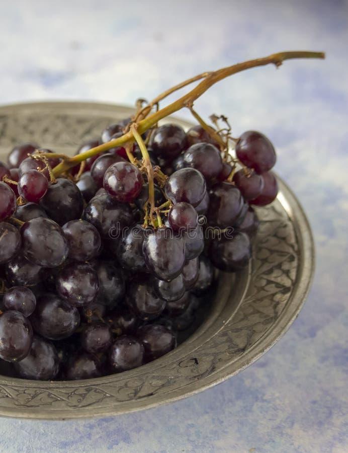Black grapes close up stock photography