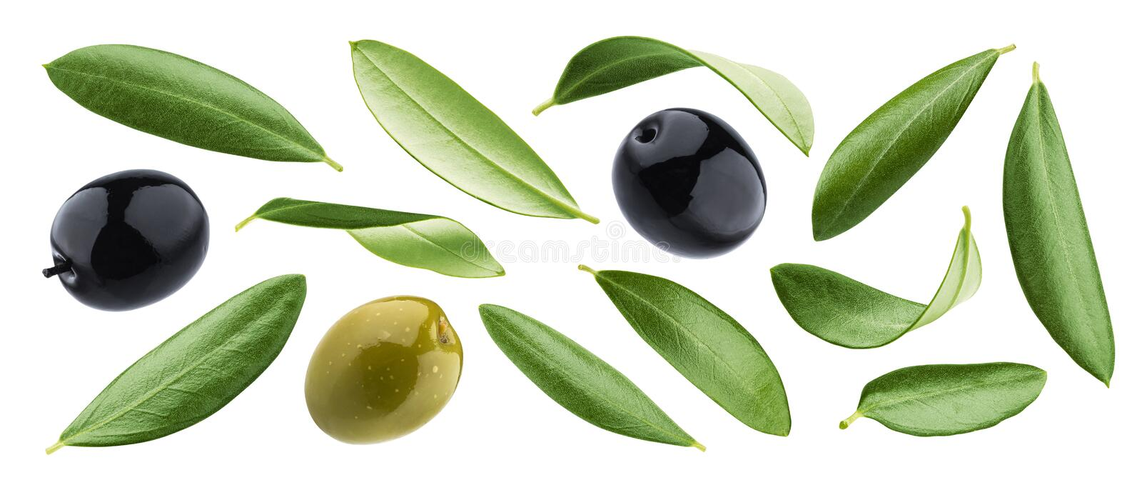 Black and green olives with leaves isolated on white background royalty free stock photo