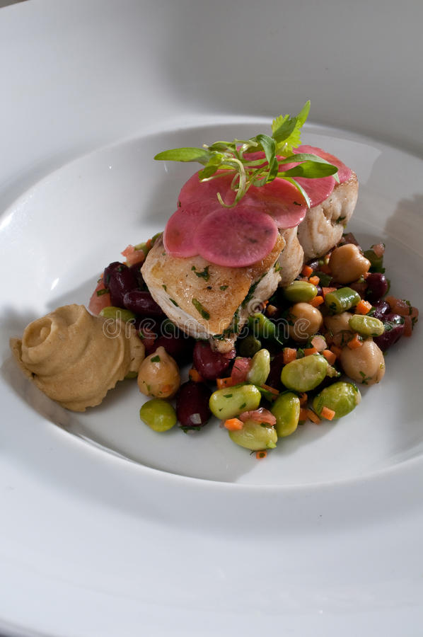 Black grouper over beans. Black grouper over a salad of beans with radish stock images
