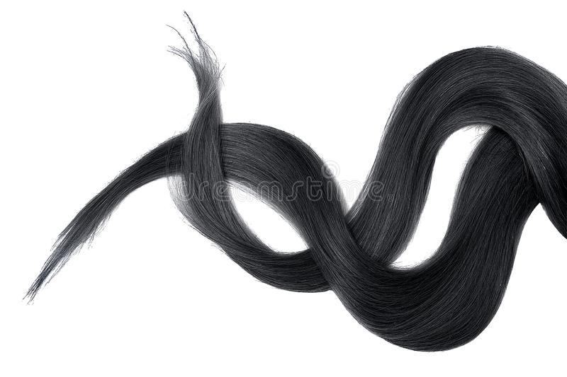 Black hair isolated on white background. Long disheveled ponytail. Natural healthy hair isolated on white background. Detailed clipart for your collages and royalty free stock photos
