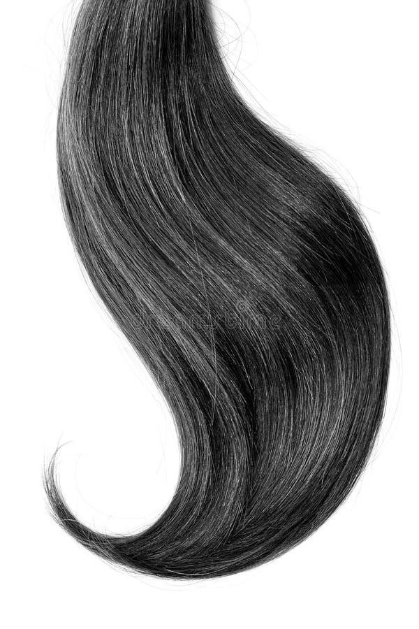 Black hair, isolated on white background. Long and disheveled ponytail royalty free stock images